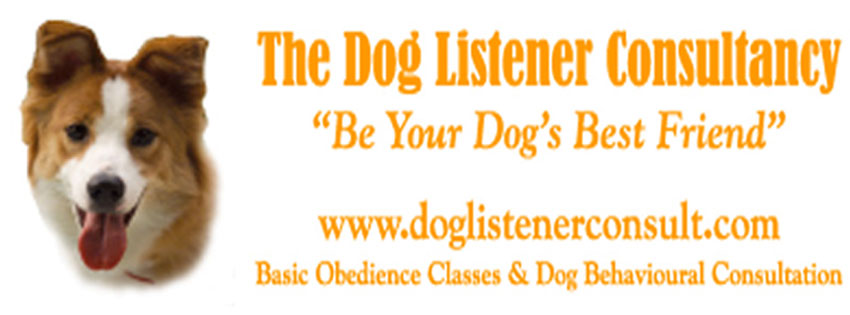 Your Dogs Can Become Your Best Friend with Our Training